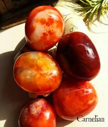 Carnelian stimulates creativity, strengthens concentration and courage. Get them in The Magick Cabinet metaphysical shop.